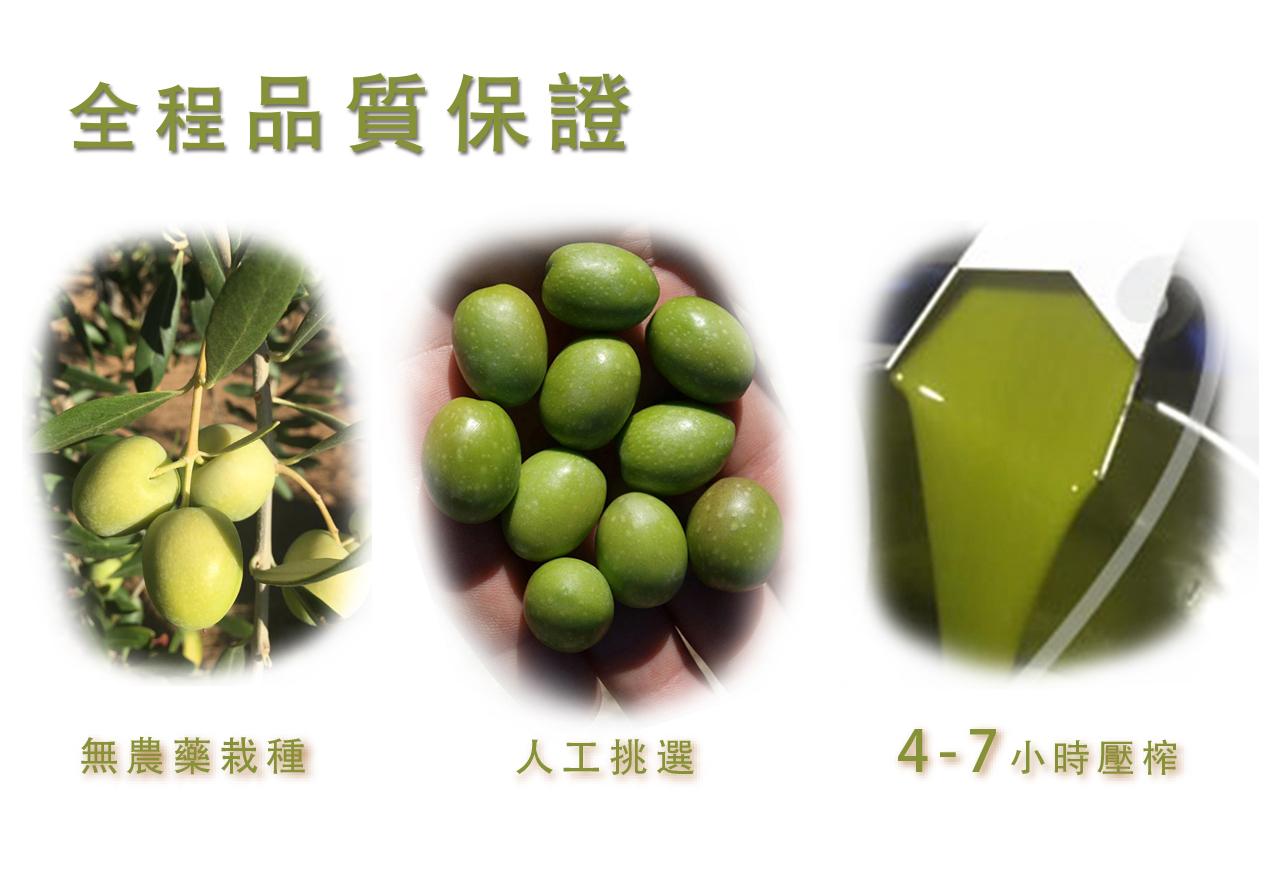 維爾璐 Vieiru橄欖油全程品質保證